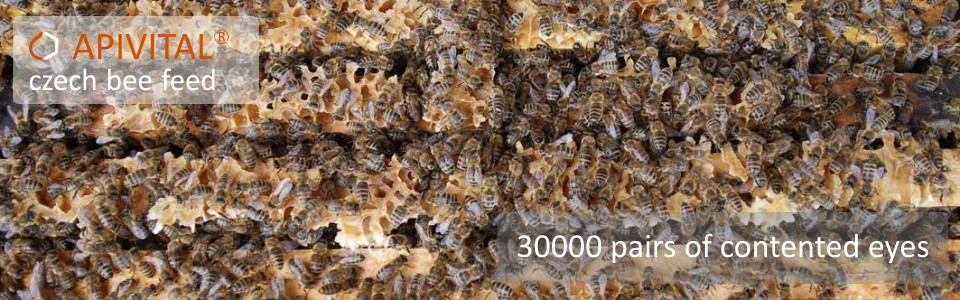 APIVITAL® syrup - the bee feed, what is hundred per cent clean, safe, economical and easy to use for both: beekeeper and bees