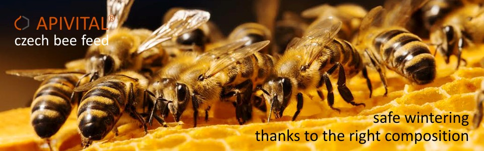 APIVITAL® syrup - we use for feeding our bees the feed, what is clean, safe, money saving and 100% utilizable by bees